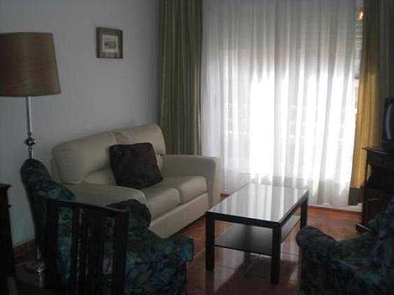 Piso en alquiler en Puertollano - 293711645
