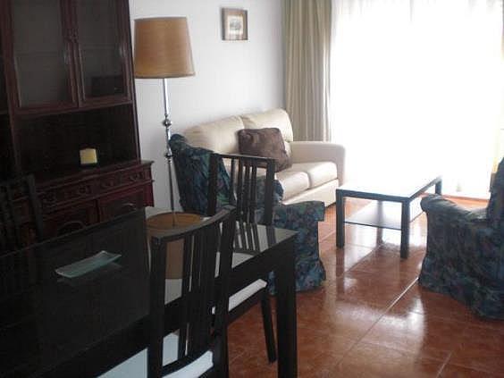 Piso en alquiler en Puertollano - 293711666
