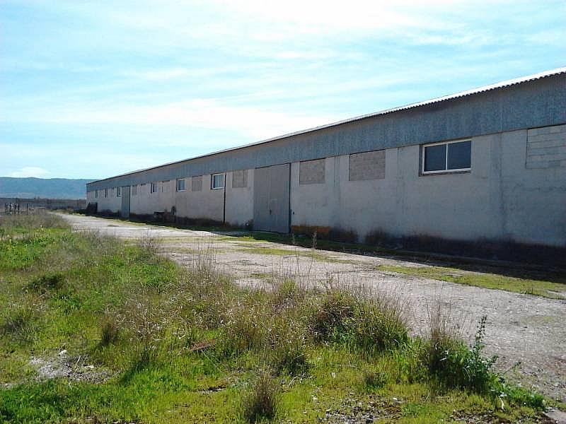 Foto - Nave industrial en alquiler en polígono Alrededores Pedanías, Antequera - 225748496