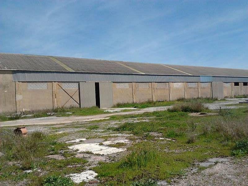 Foto - Nave industrial en alquiler en polígono Alrededores Pedanías, Antequera - 225756851