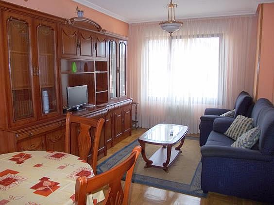 Apartamento en alquiler en calle Juan Antonio Alvarez Rabanal, Milán-Pumarin-Pontón de Vaqueros en Oviedo - 331791316
