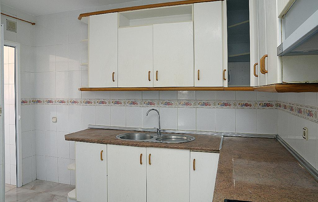 Cocina - Piso en alquiler en calle Floridablanca, Palmar, el (el palmar) - 283568534