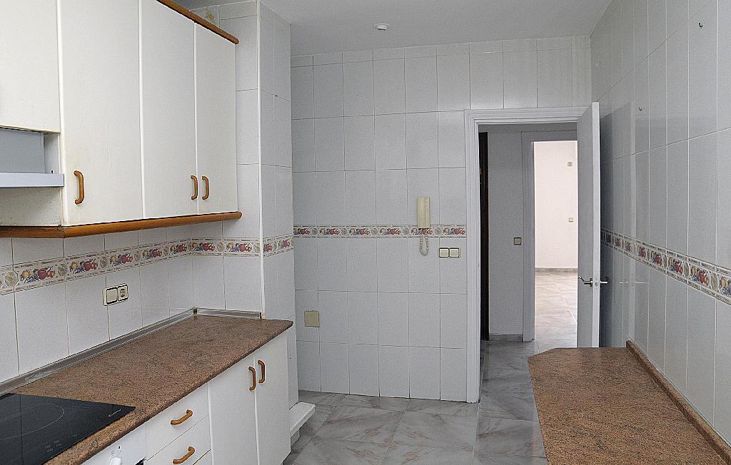 Cocina - Piso en alquiler en calle Floridablanca, Palmar, el (el palmar) - 283568536