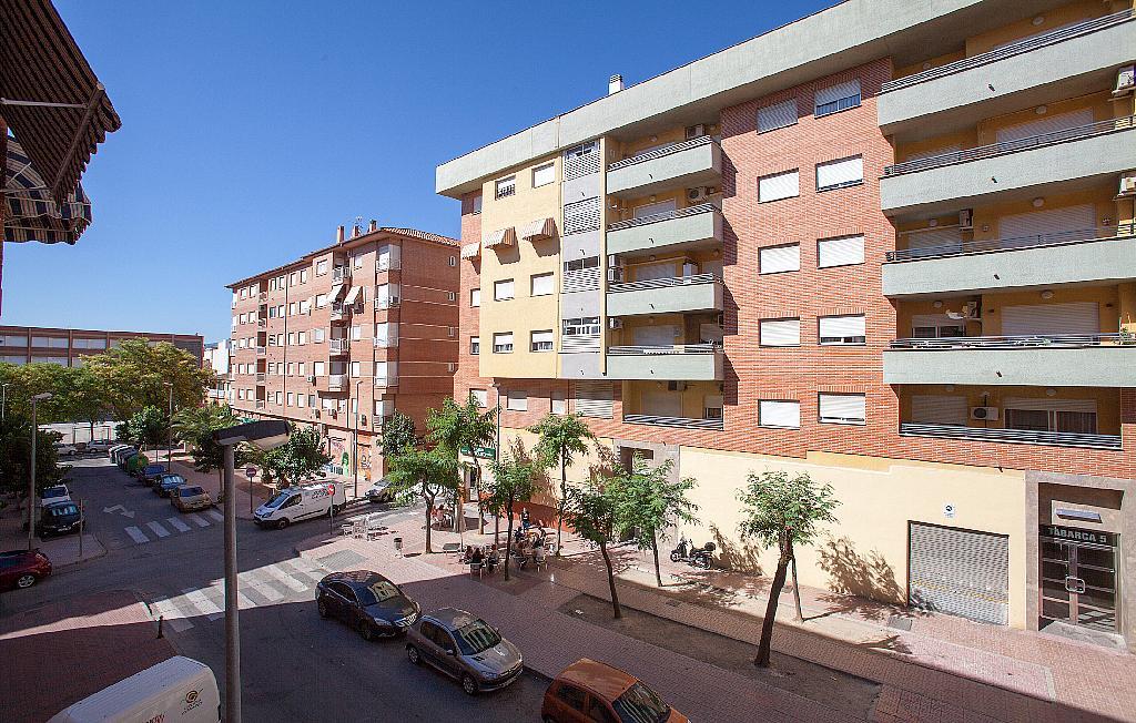 Vistas - Piso en alquiler en plaza De Las Flores, Huerto de los Frailes en Alcantarilla - 293076242