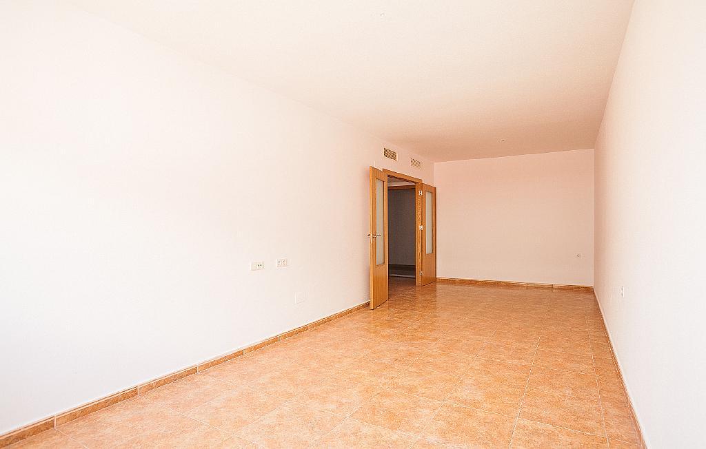 Salón - Ático-dúplex en alquiler en calle Ciudad de Murcia, Beniaján - 300923852