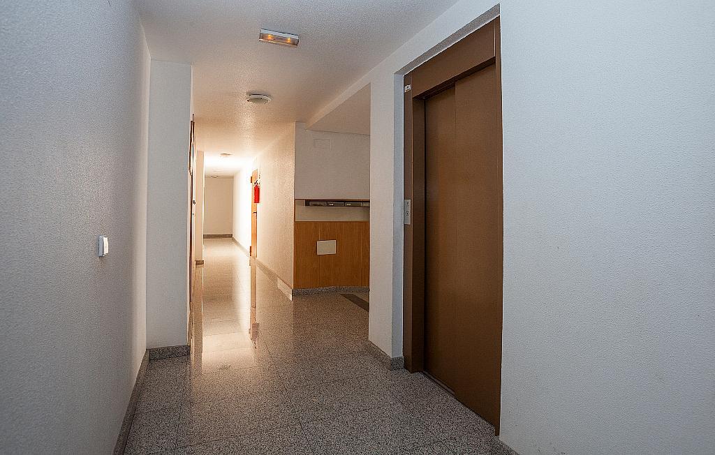 Zonas comunes - Ático-dúplex en alquiler en calle Ciudad de Murcia, Beniaján - 300923883