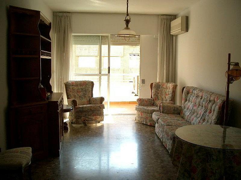 Salón - Apartamento en alquiler en calle Olof Palme, San Anton en Murcia - 316016996