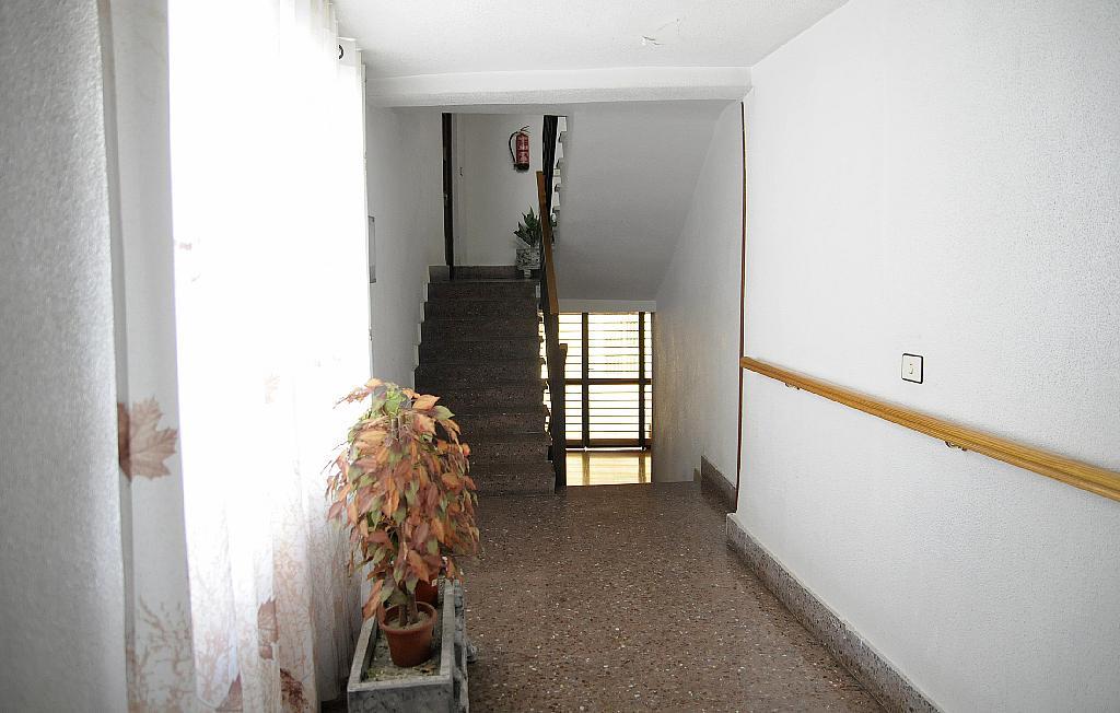 Zonas comunes - Piso en alquiler en calle De la Cruz, San Roque en Alcantarilla - 320705562