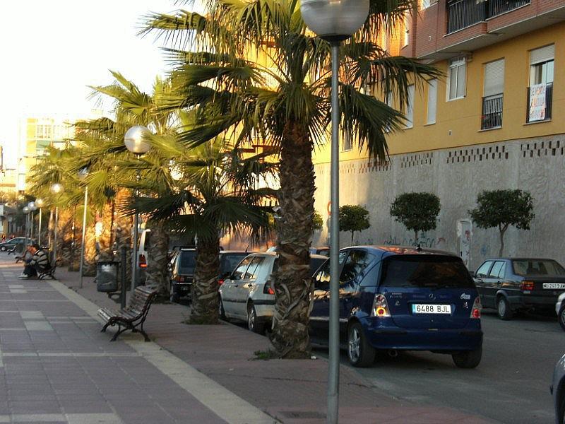 Fachada - Local en alquiler en plaza Pepe de la Pequeña Esquina, Vistabella en Alcantarilla - 155139374