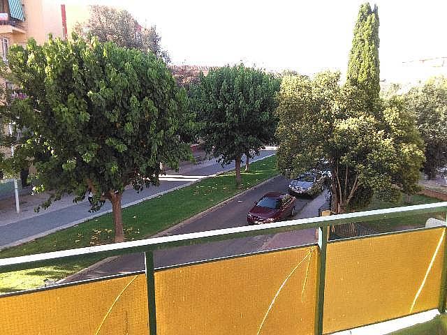 Piso en alquiler en calle Germanias, Xàtiva - 301783300