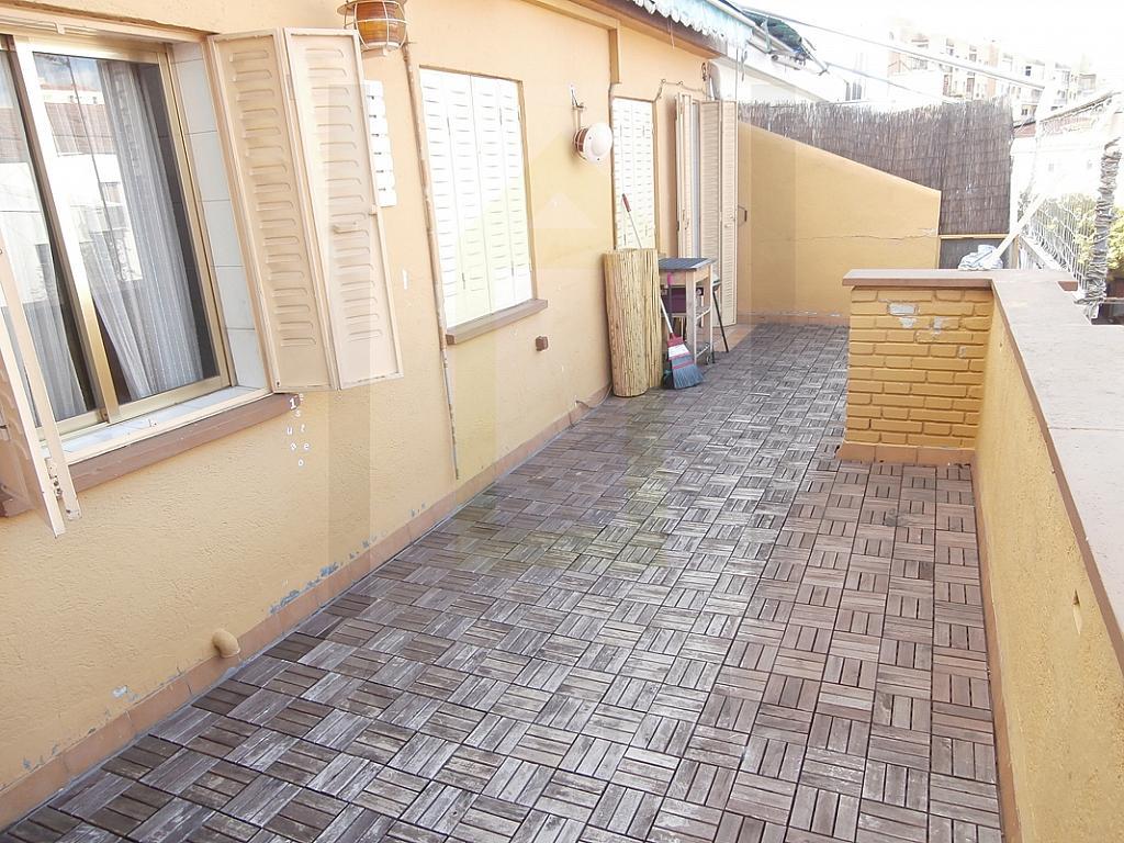 Terraza - Ático en alquiler en calle Jacinto Camarero, Opañel en Madrid - 226660044