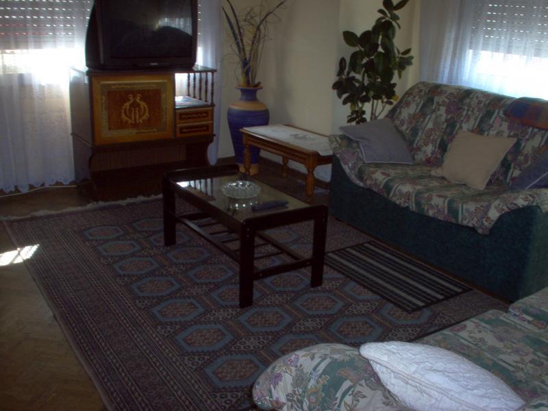 Salón - Piso en alquiler en calle Uxio Novoneira, Arteixo - 56918638