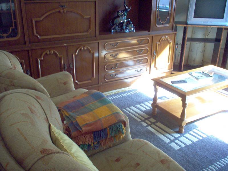 Salón - Piso en alquiler en calle Uxio Novoneira, Arteixo - 56918888