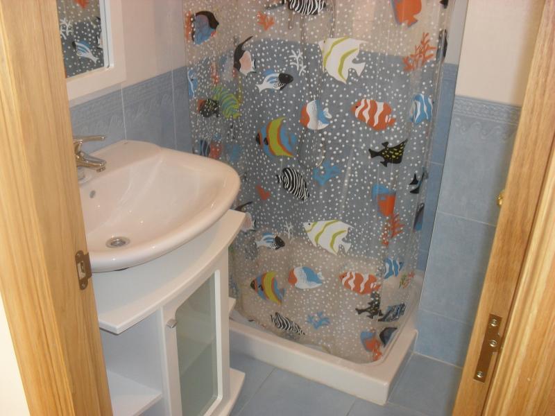 Baño - Piso en alquiler en calle Rua Da Capela, Arteixo - 57087062