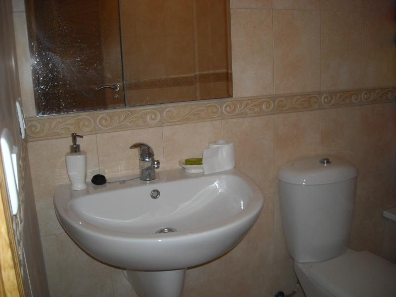 Baño - Piso en alquiler en travesía Arteixo, Arteixo - 78792579