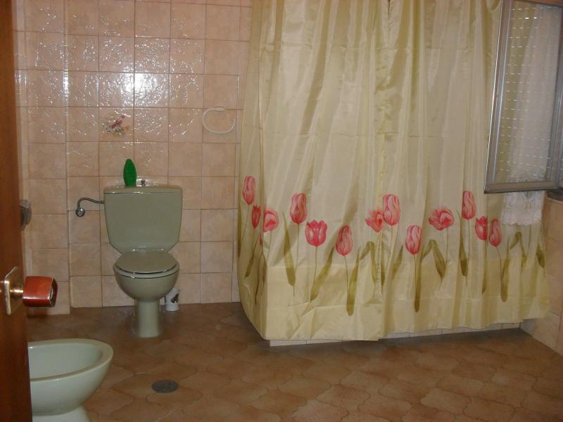 Baño - Piso en alquiler en calle Otero Pedrayo, Arteixo - 116908065