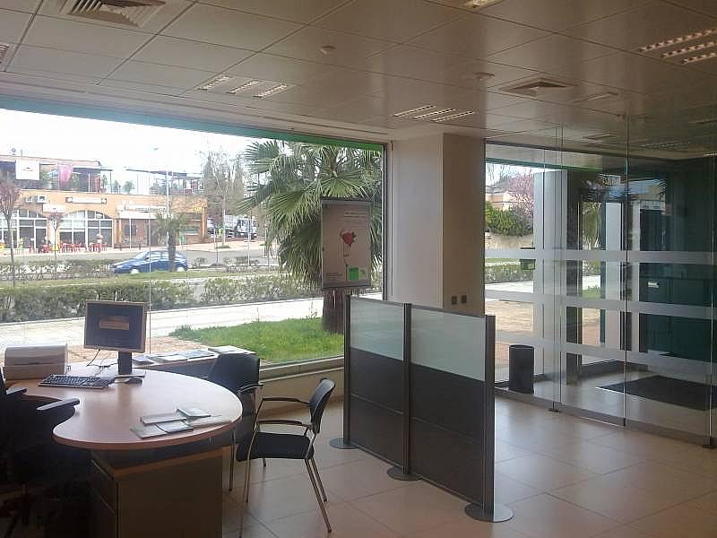 Foto - Local comercial en alquiler en calle Avenida de Elvas, Jardines del Guadiana en Badajoz - 269436739