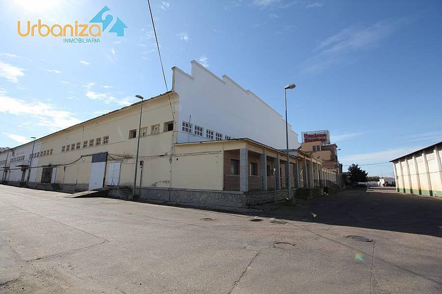 Foto - Nave industrial en alquiler en carretera De Madrid Km, Badajoz - 269442817