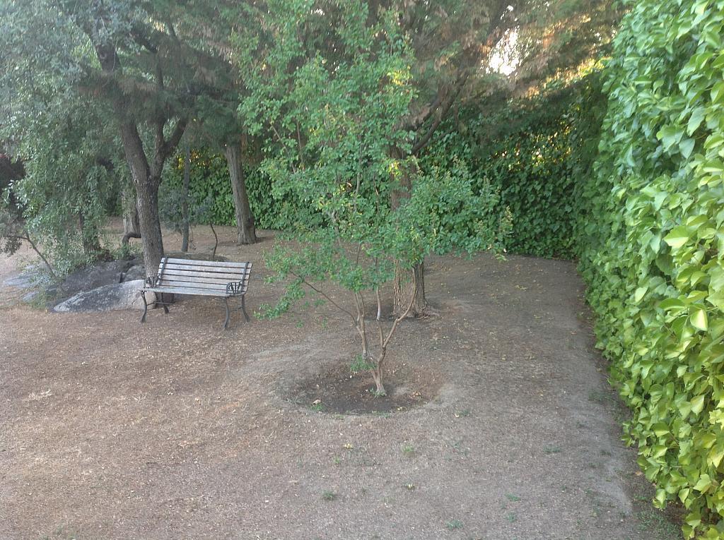 Jardín - Chalet en alquiler en calle Real, Alpedrete - 266263172
