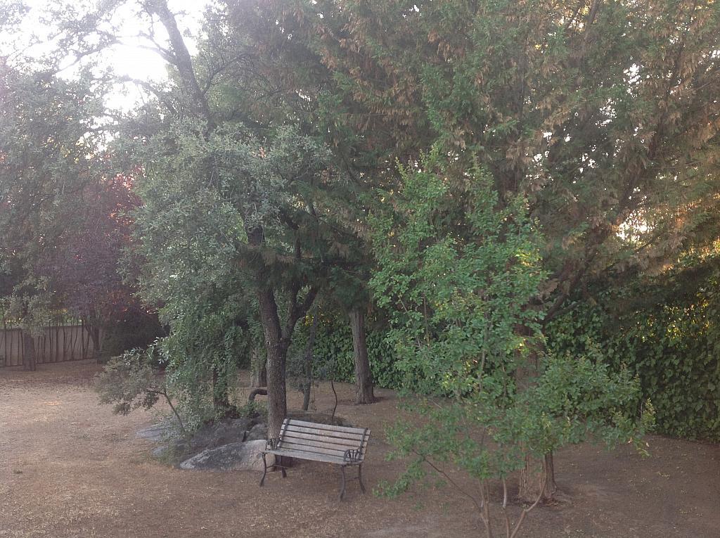 Jardín - Chalet en alquiler en calle Real, Alpedrete - 266263211