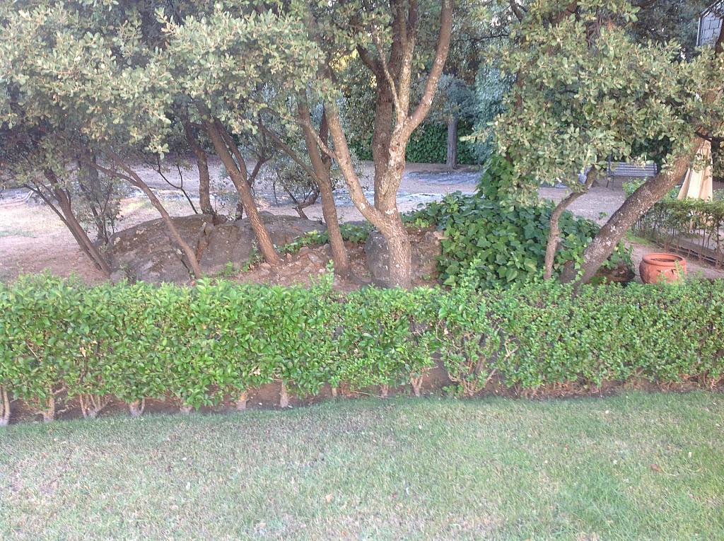 Jardín - Chalet en alquiler en calle Real, Alpedrete - 266263369