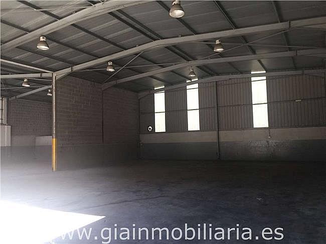 Nave industrial en alquiler en polígono Gandaras, Porriño (O) - 326569003
