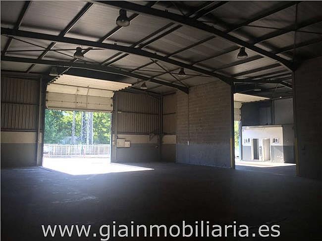 Nave industrial en alquiler en polígono Gandaras, Porriño (O) - 326569006