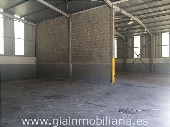 Nave industrial en alquiler en polígono Gandaras, Porriño (O) - 326569009