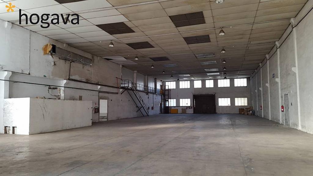 Foto - Nave industrial en alquiler en calle Baix Llobregat, Martorell - 273632266