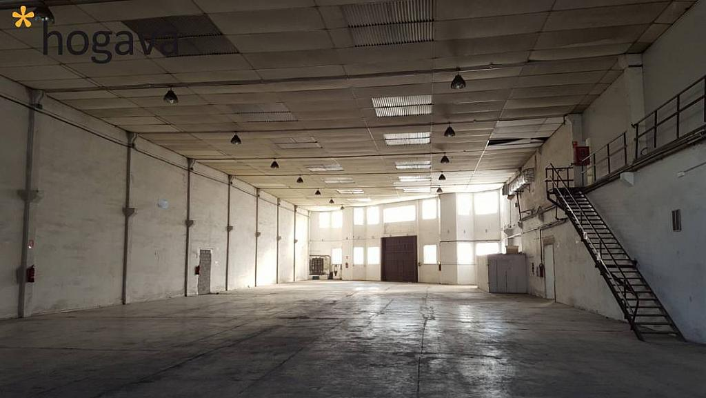 Foto - Nave industrial en alquiler en calle Baix Llobregat, Martorell - 273632269
