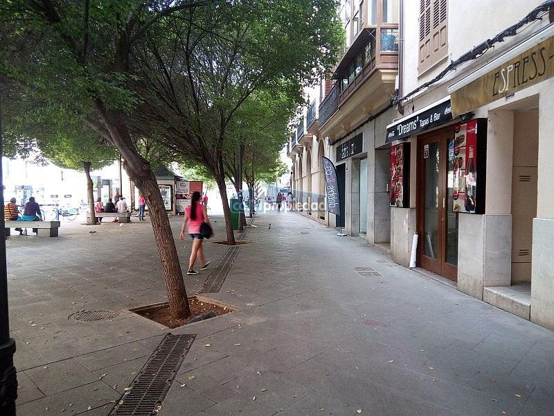 IMG_20160922_181514 - Local comercial en alquiler en Urbanitzacions Llevant en Palma de Mallorca - 324106231