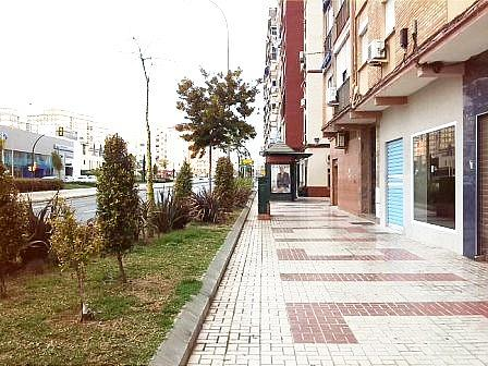 Local comercial en alquiler en calle Juan XXIII, La Unión-Cruz de Humiladero-Los Tilos en Málaga - 244399309