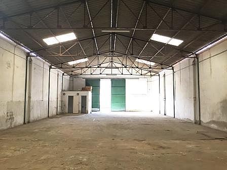 Nave industrial en alquiler en calle Guillermo Rein, El Cónsul-Ciudad Universitaria en Málaga - 244384703