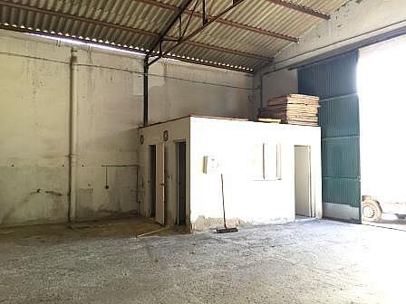 Nave industrial en alquiler en calle Guillermo Rein, El Cónsul-Ciudad Universitaria en Málaga - 244384813