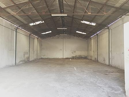 Nave industrial en alquiler en calle Guillermo Rein, El Cónsul-Ciudad Universitaria en Málaga - 244384816