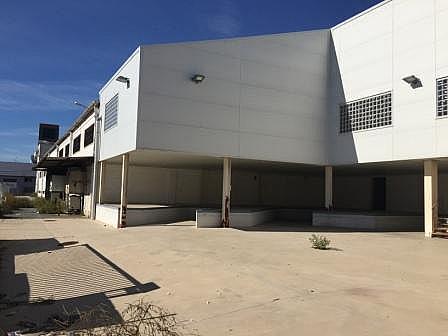Nave industrial en alquiler en calle Montevideo, Teatinos-Universidad en Málaga - 232200384