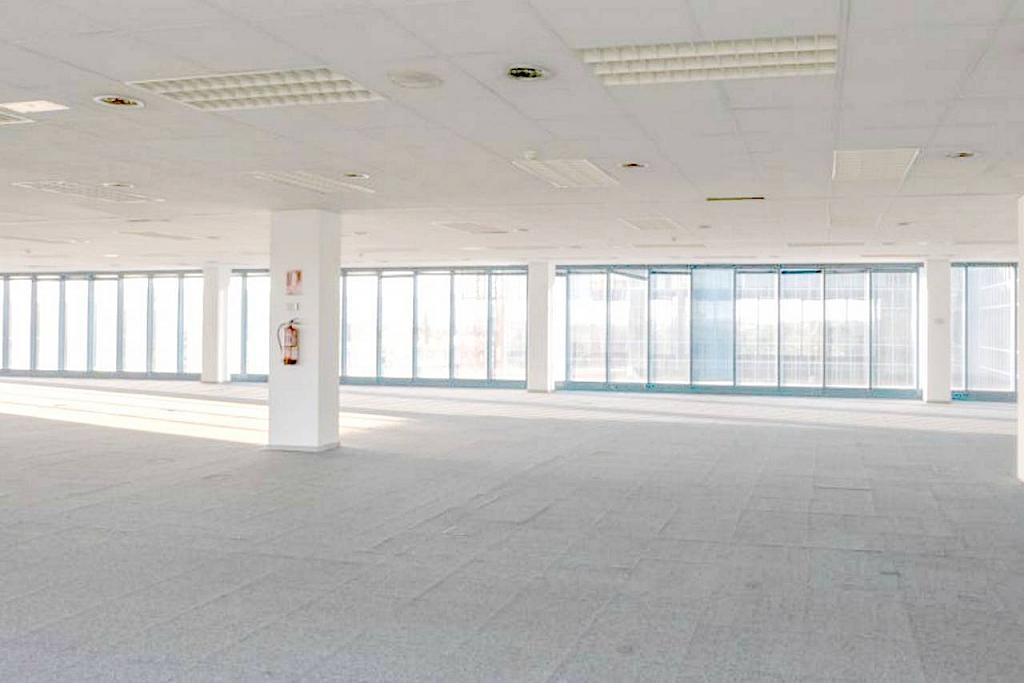 Oficina en alquiler en calle Bergueda, Polígono Industrial Mas Blau II en Prat de Llobregat, El - 263550129