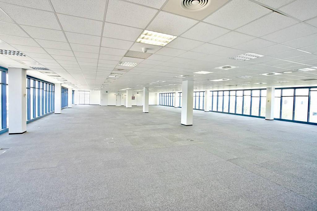Oficina en alquiler en calle Garrotxa, Polígono Industrial Mas Blau II en Prat de Llobregat, El - 269430993