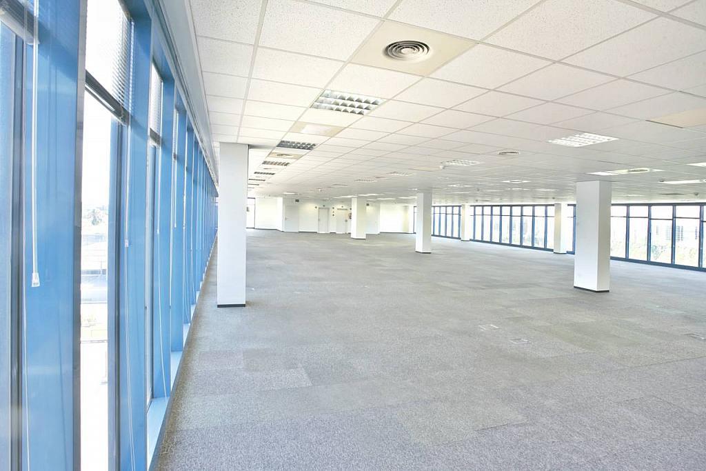 Oficina en alquiler en calle Garrotxa, Polígono Industrial Mas Blau II en Prat de Llobregat, El - 269432284