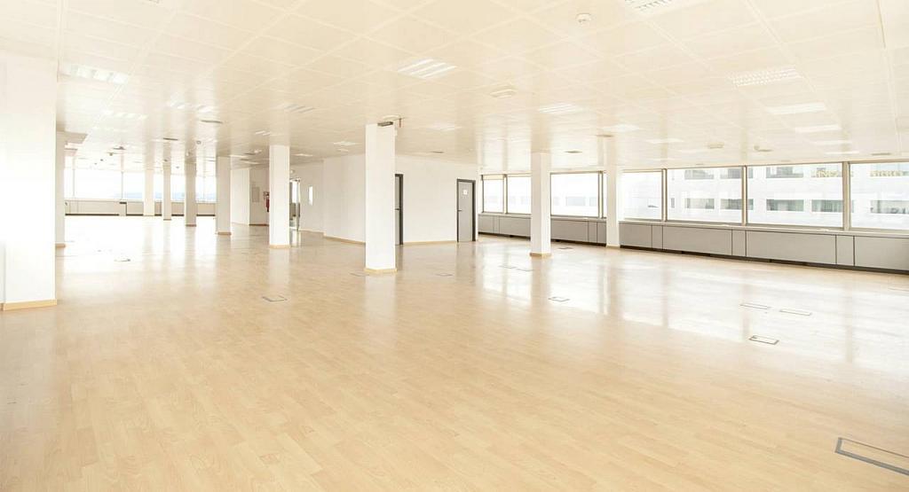 Oficina en alquiler en calle Diagonal, Les corts en Barcelona - 279719489