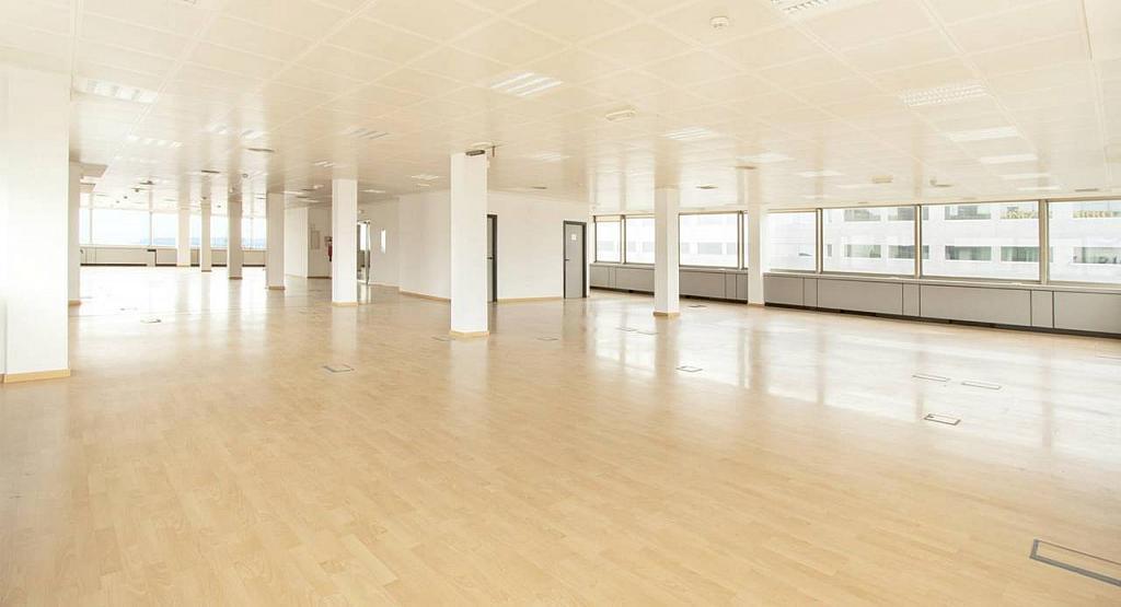 Oficina en alquiler en calle Diagonal, Les corts en Barcelona - 279719493