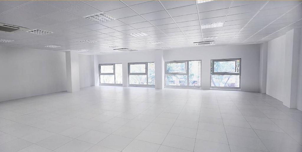 Oficina en alquiler en paseo Zona Franca, La Marina de Port en Barcelona - 303117447