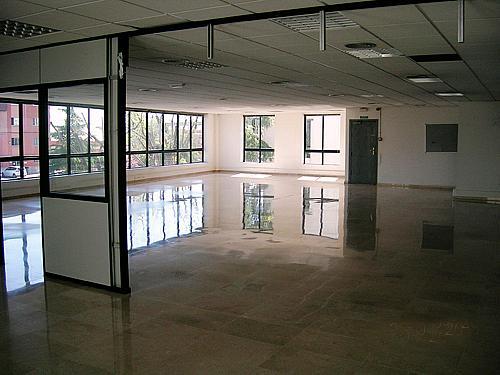 Nave en alquiler en calle Gran Via Sud, Gran Via LH en Hospitalet de Llobregat, L´ - 320690679