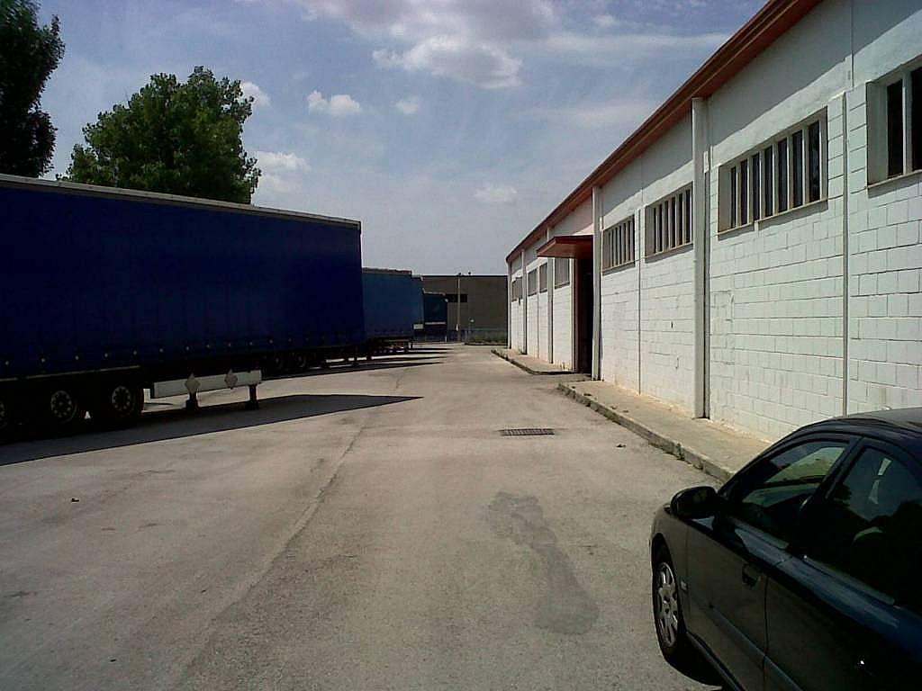 Nave en alquiler en calle Industrial Sud, Pol. del sud en Esparreguera - 319366822