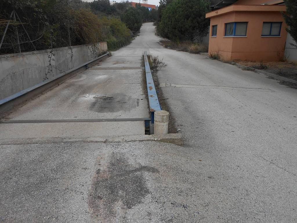 Nave en alquiler en calle Santa Rita, Castellbisbal - 353112507