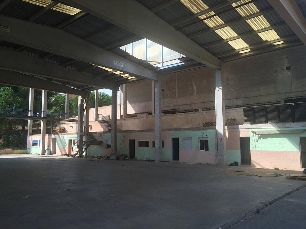 Nave en alquiler en calle Santa Rita, Castellbisbal - 353112517