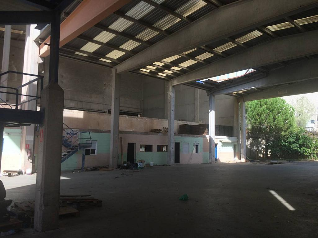 Nave en alquiler en calle Santa Rita, Castellbisbal - 353112540