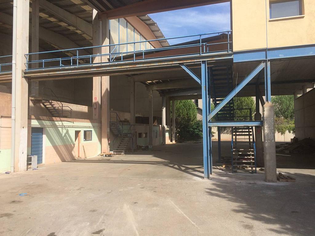 Nave en alquiler en calle Santa Rita, Castellbisbal - 353112541