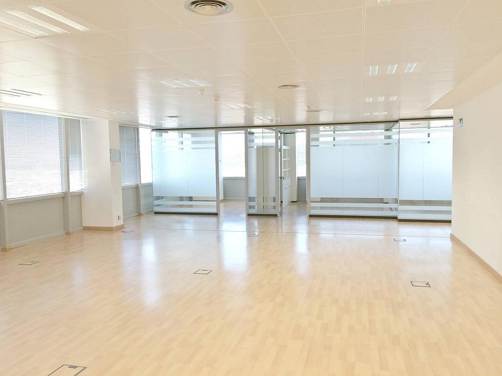 Oficina en alquiler en calle Tarragona, Hostafrancs en Barcelona - 377416678