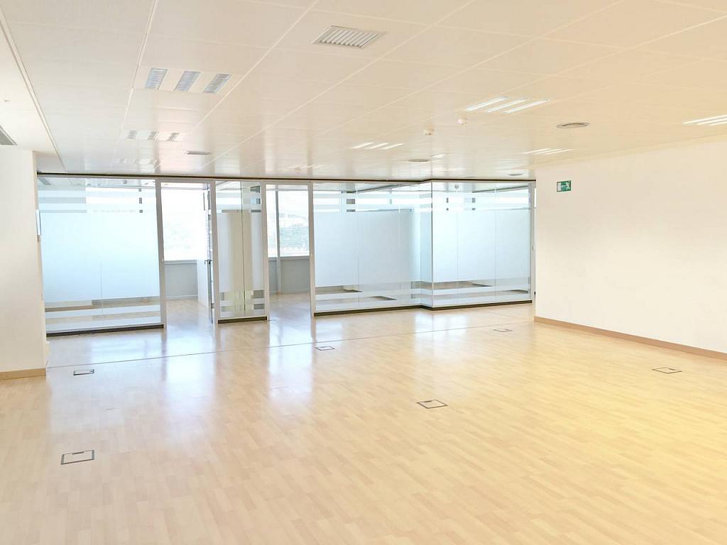 Oficina en alquiler en calle Tarragona, Hostafrancs en Barcelona - 377416680